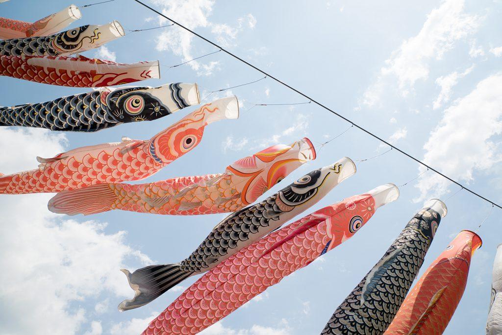 長房ふれあい端午まつり 八王子鯉のぼり