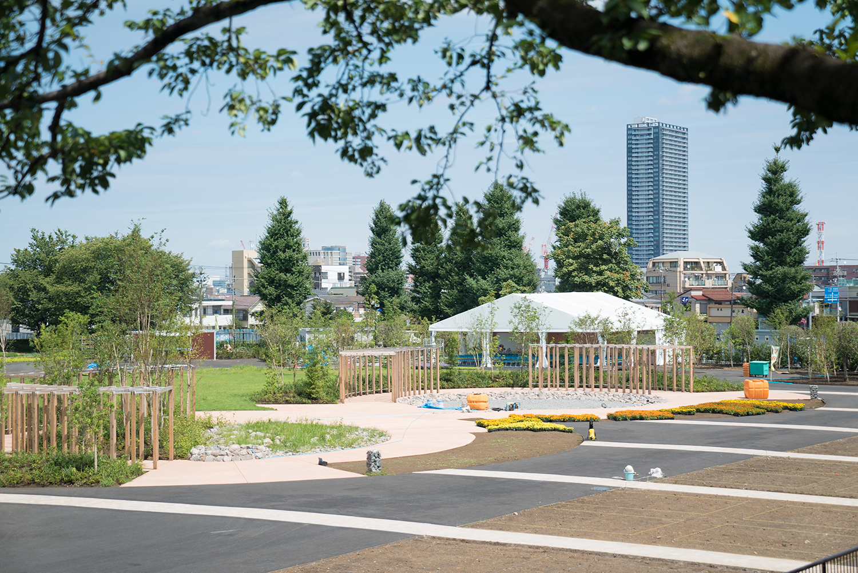 八王子 緑化フェア 富士森公園