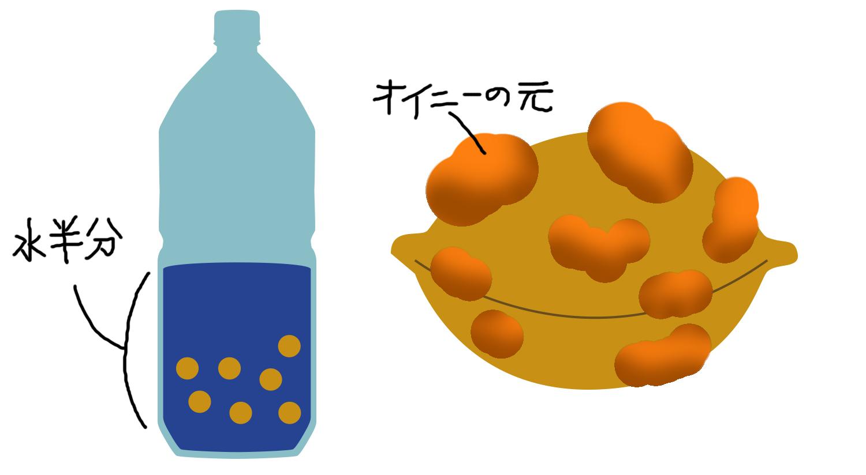八王子の秋の味覚甲州街道産ぎんなん食べてみた!!