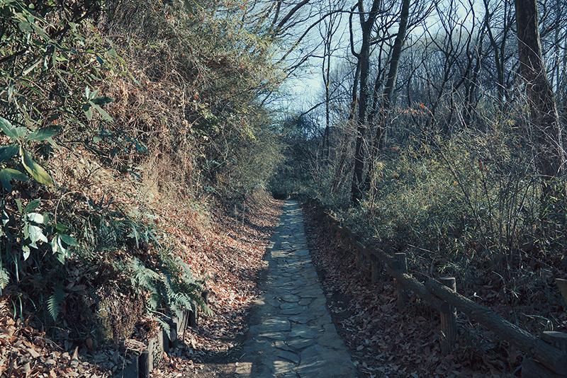 長沼公園 八王子のおすすめ初日の出スポットは高尾山だけじゃない!!
