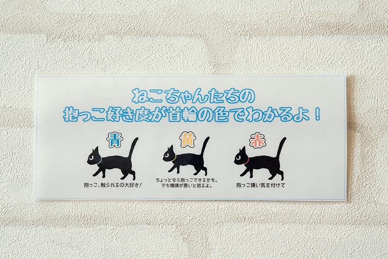 猫カフェ コックンの別荘 八王子OPA(オーパ)店 抱っこ好き度