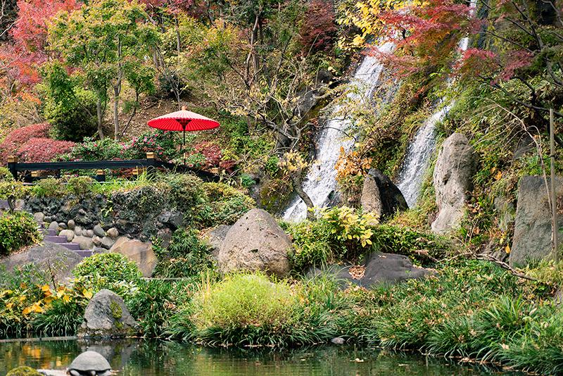 八王子映画祭 会場 Royal Garden Palace 八王子日本閣 景観