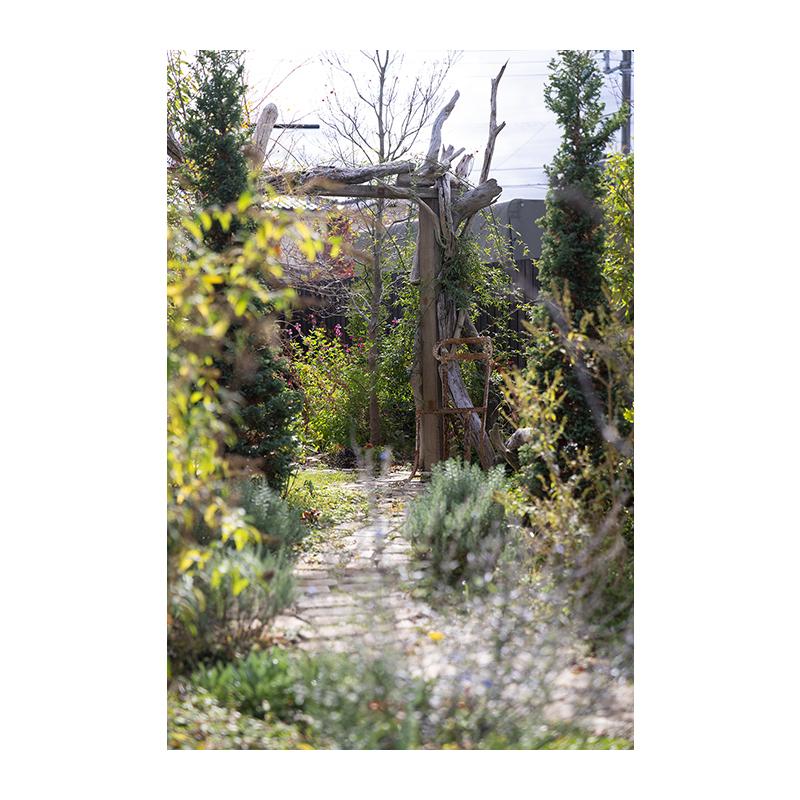 ガーデンハウス サルーテ(Garden House Salute) 外観 庭