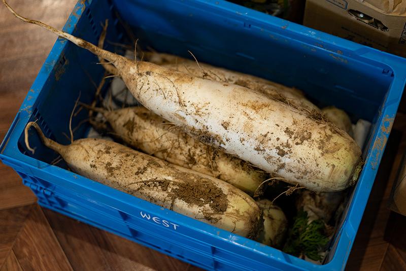 菜食健美なないろや|自家農園の八王子野菜たっぷりランチ