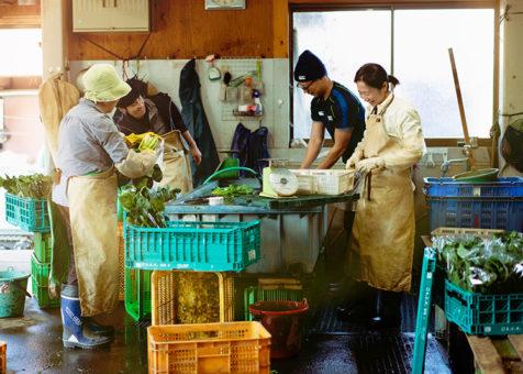 八王子のスケボーパーク付きボード専門店PASTIME